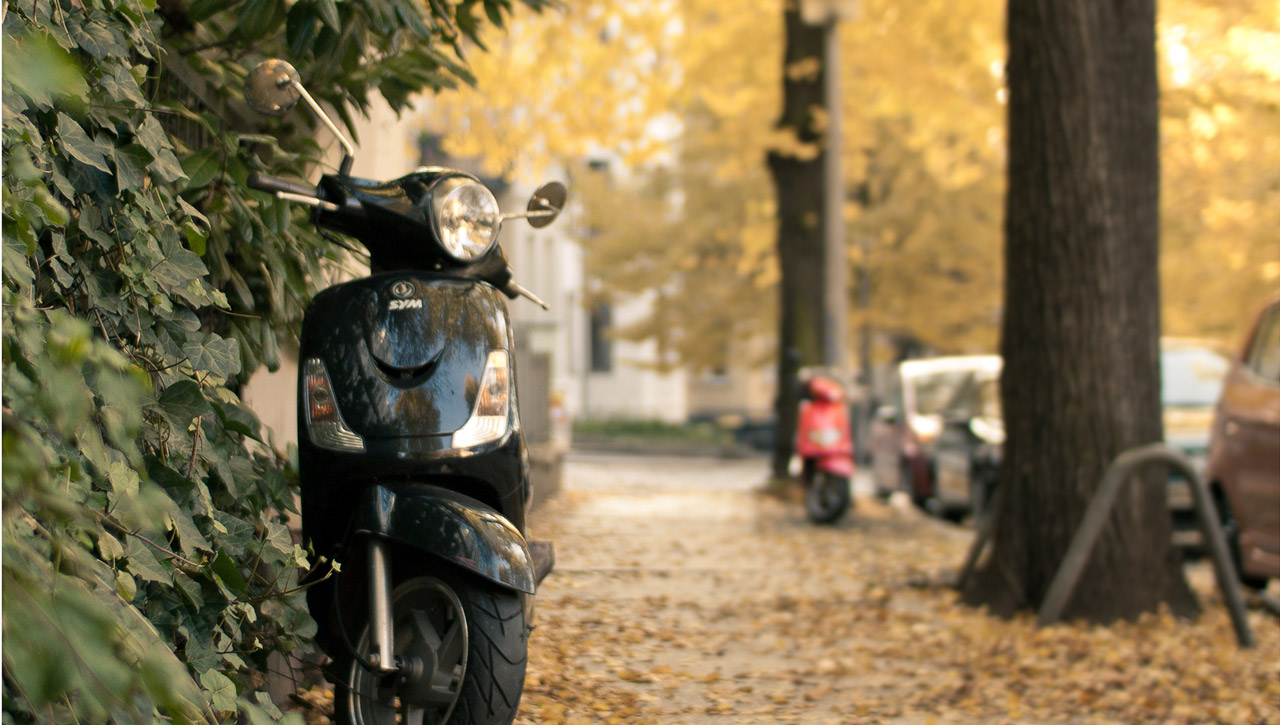 Autumn Scooter