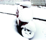 Snow-Scooter